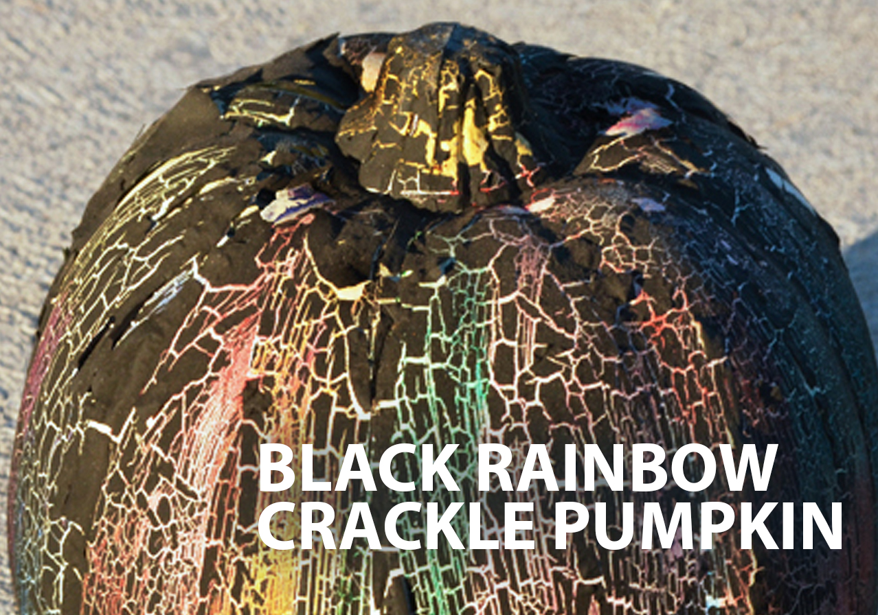 black-rainbow-crackle-pumpkin